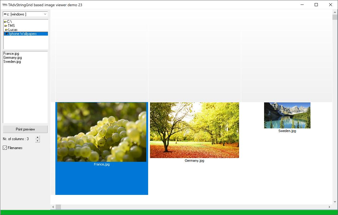 vcl grid image catalogue