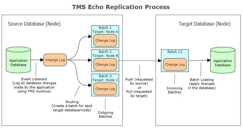 TMS Echo