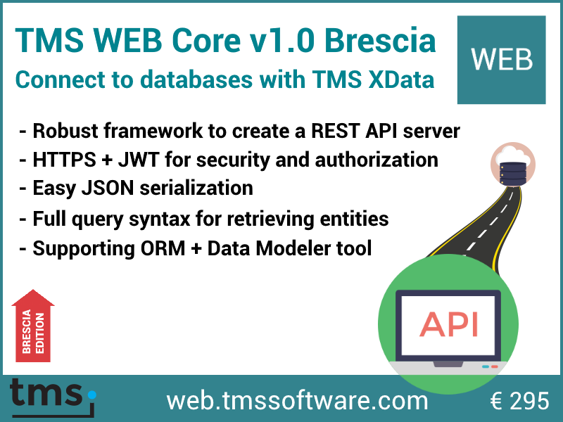 TMS Software | Blog | From Database to Web App through REST server