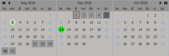 Delphi component VCL Planner Calendar